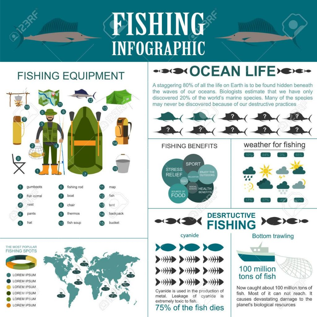 Fishing Info Graphic 1024x1024 - Fishes All Around The World